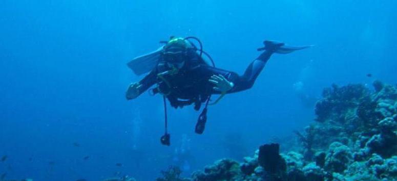 Дайвер проходит курс профессиональной плавучести в Красном море. Апрель 2008 года