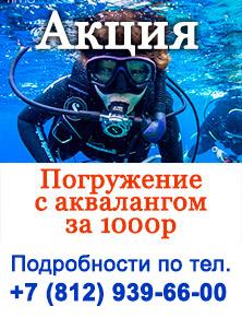 akciya-dayving